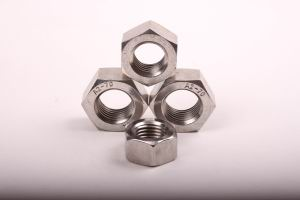 stainless steel hex nuts Hex Nuts