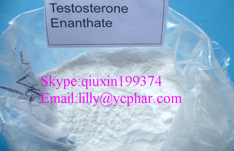 Safe and Legal Anabolic Muscle Building Testosterone Enanthate / Test E White Crystalline Powder CAS 315-37-7