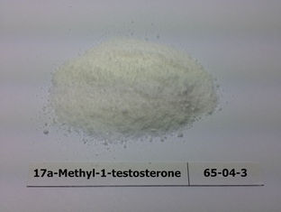 Healthy 17a-Methyl-1-testosterone Steroids / Testosterone Steroid Hormone For Male Muscle Building CAS 65-04-3
