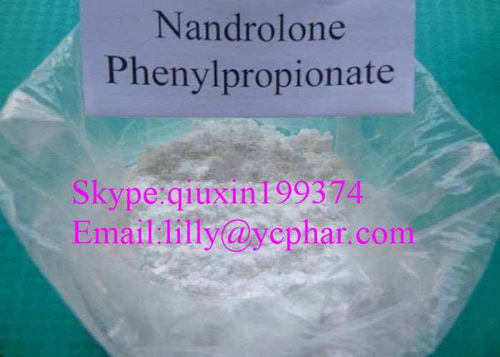 CAS 62-90-8 Bodybuilding Nandrolone Steroid Injection / Safety Nandrolone Phenylpropionate