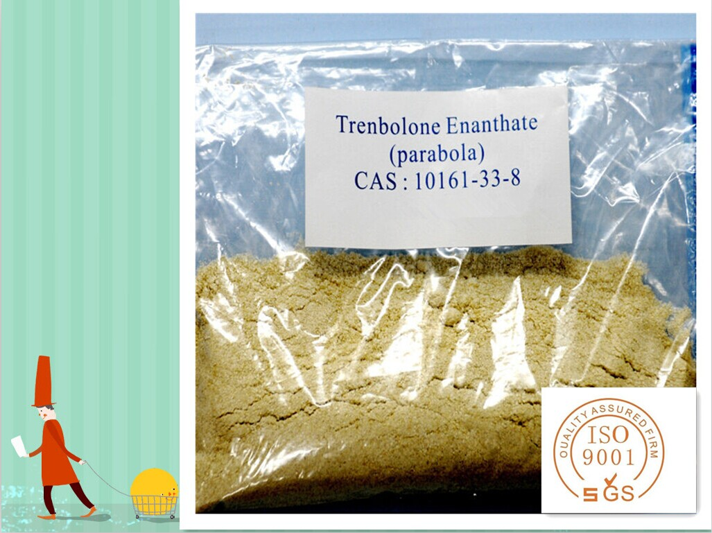 Factory Direct Hot Sale Trenbolone Enanthate(parabola) CAS:10161-33-8 Good price