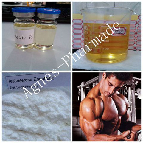 Pre-made Testosterone Enanthate 250mg/ml Legal Injectable Steroids Test E Oil