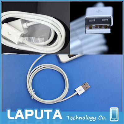 iPhone 5s Data Cable