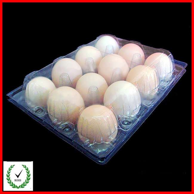 plastic deviled egg tray 12 Cells Egg Tray