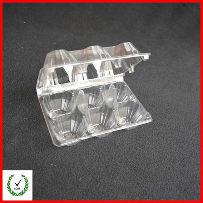 6 Cells Egg Tray