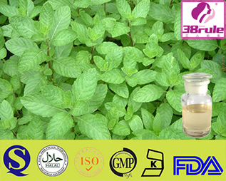 damiana leaf for sale Damiana Leaf Extract/ Damiana