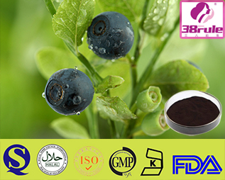 stevia extract in the raw Stevia Extract