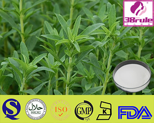 bilberry extract for skin Bilberry Extract