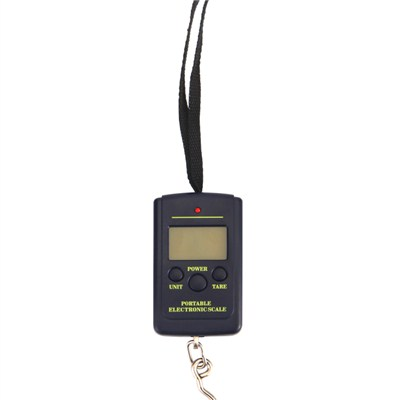 Electronic Weigh Scale TS-T09