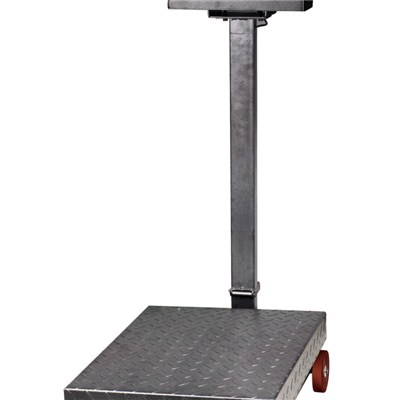 500kg Weight Platform Scale TS-832