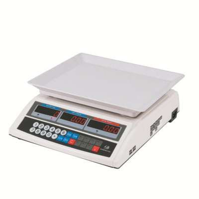 Solar Price Computing Scale TS-807