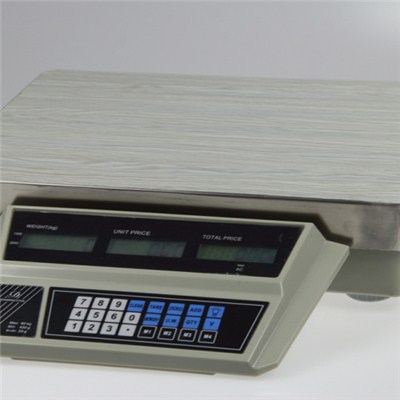 Electronic Scale Computing TS-809