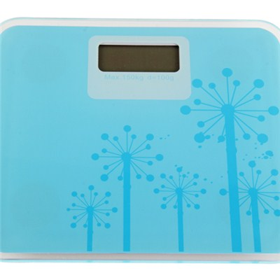 Mini Weighing Scale TS-MINID01