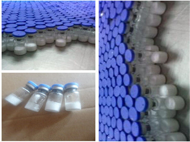 2mg/Vial Bodybuilding Human Growth Pentadecapeptide Bpc 157