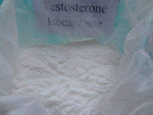 Testosterone Isocaproate Steroid Pharmaceutical Raw Materials Test Iso