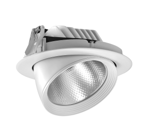 Trunk Cob LED Downlight