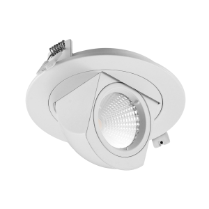 Adjustable Cob LED Trunk Ceiling Light