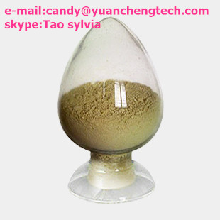 Hok Tong grass extract
