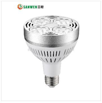 LED Par30 Light E27