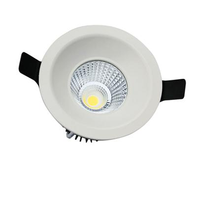 Adjustable LED Downlight
