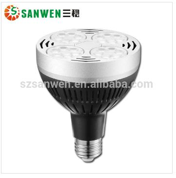 LED Par30 Light