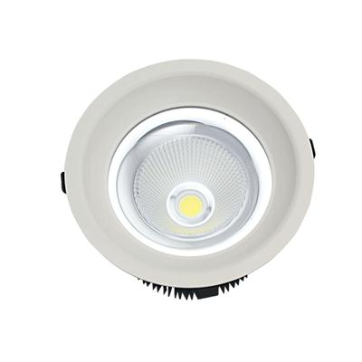 LED Light Downlight