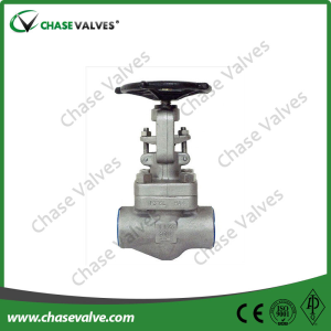 Stainless Steel Forged Globe Valve
