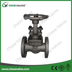 Bolted Bonnet Flanged Ends Globe Valve