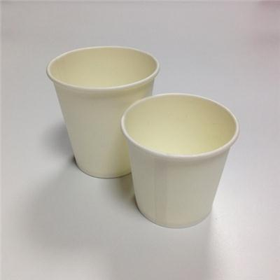 Blank Disposable Paper Cups