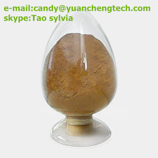 Tuber Onion Seed extract