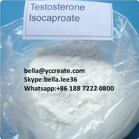Raw Steroid Powder Testosterone Isocaproate