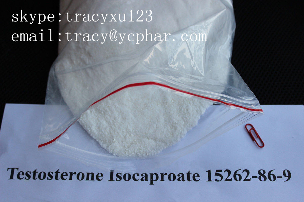 Testosterone isocaproate/ bodybuilding / Testosterone Steroid Hormone / 15262-86-9  email:tracy@ycphar.com