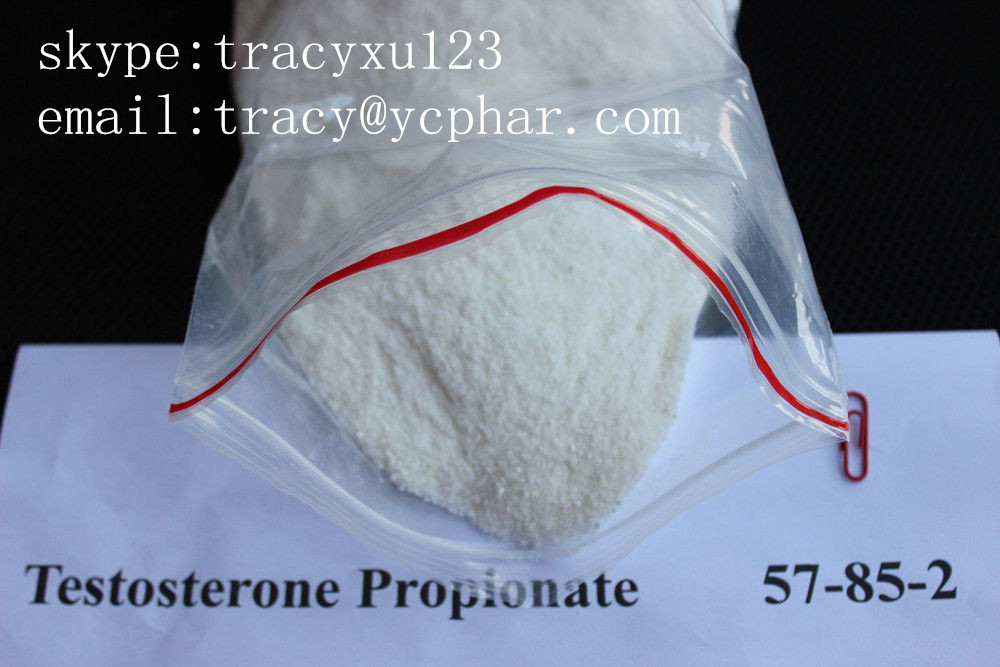 Testosterone propionate   email:tracy@ycphar.com