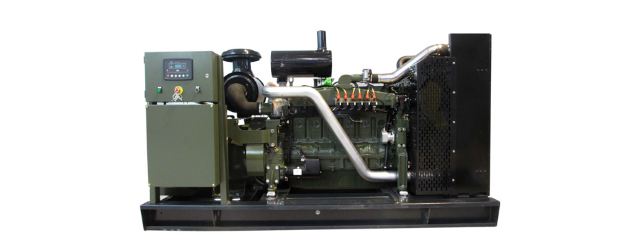 Biomass Genertor power generation