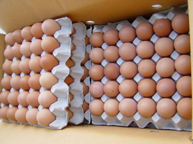 Fresh eggs ( BROWN AND WHITE)