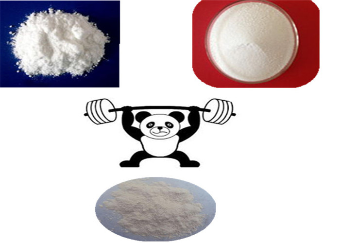 Estriol Raw Steroid Powder Anabolic Steroid Estriol Powder