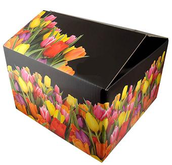 Gift Cardboard Packaging Boxes