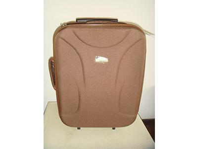 Wheeled Foldable Bags