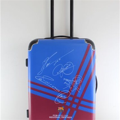 Abs Pc Printing Trolley Luggage