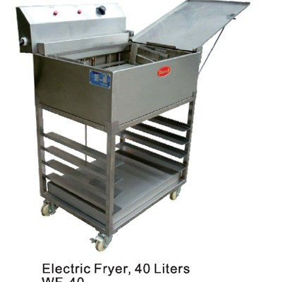 Electric Fryer WF-40