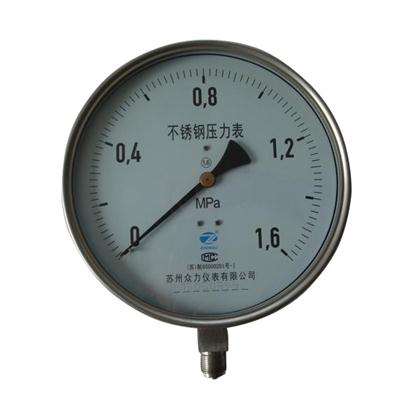 8inch-200mm Full Stainless Steel Bottom Thread Type Pressure Manometer