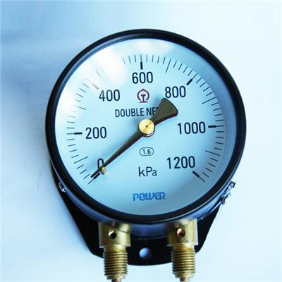 100mm Steel And Brass Material Bottom Type With Flange Double Needle Pressure Train Gauge