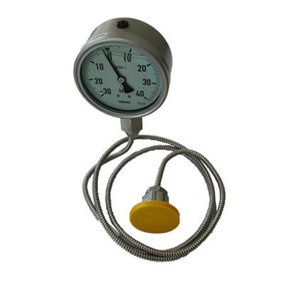 4 Inch 100mm Diameter Capillary Diaphragm Pressure Gauge For Corrosion Proof Could Customize Dial