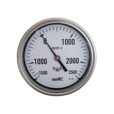 YE-100D 100mm Stainless Steel Case Back Brass Connection Capsule Pressure Gauge