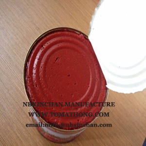 Tomato Ketchup Squeezy Bottle 400g