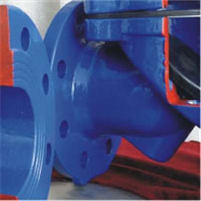 Swing Flex Check Valve