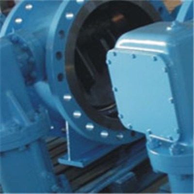 Swing Butterfly Check Valve