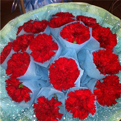 Flower Sleeves For Decoration