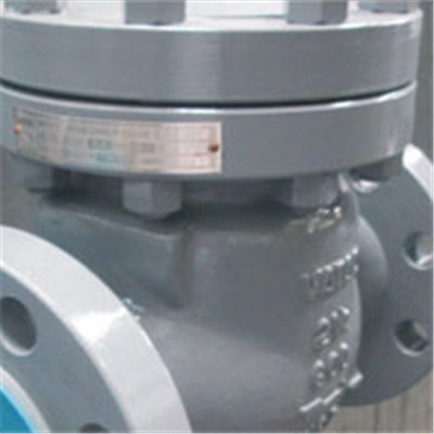 Marine Cast Steel Check Valve