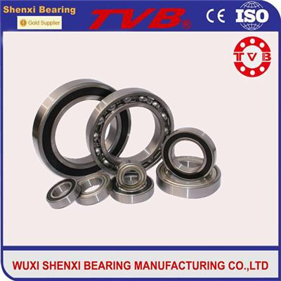 6305 2RS Bearings